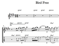 Изображение Bird Free Sheet Music & Tabs